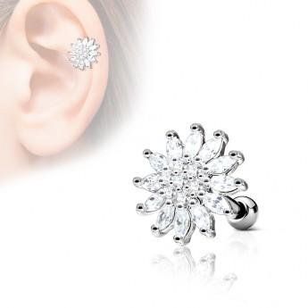 Cartilage piercing do ucha