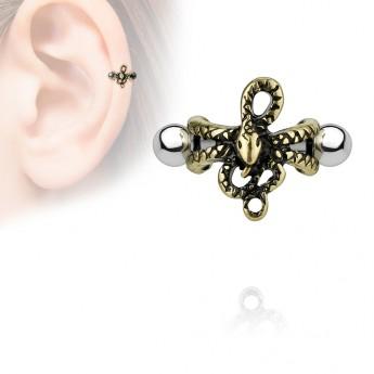Cartilage piercing do ucha - had