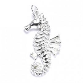 Stříbrný přívěšek - mořský koník